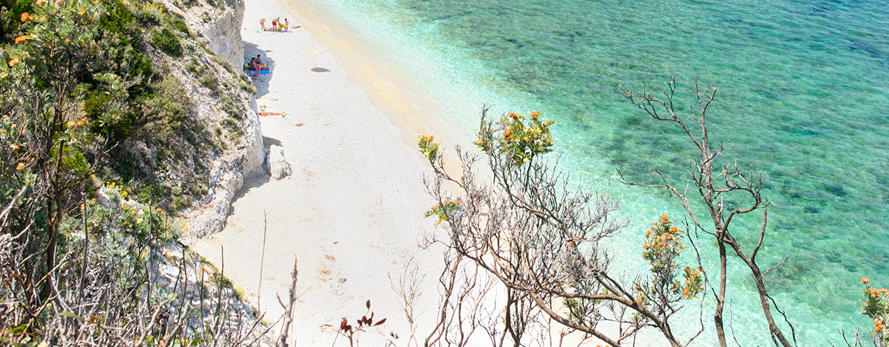 Foto: Isola d'Elba: 10 esperienze da non perdere