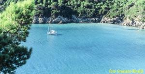 Foto: La bellissima spiaggia di Fetovaia