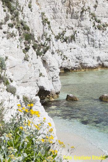 spiaggia_padulella_Elba