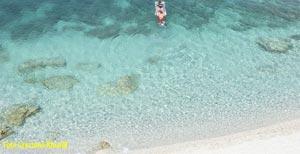 Foto: Sansone all'isola d'Elba