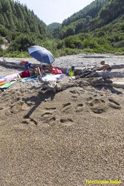 ombrelloni e tronchi d'albero sulla spiaggia di Buzzancone