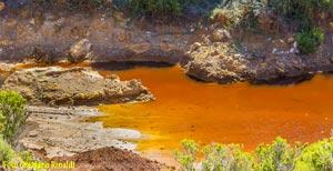Foto: Isola d'Elba: il Rosso