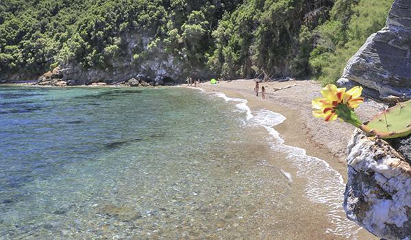 7 spiagge dell'isola d'Elba poco conosciute_Porticciolo presso rio marina