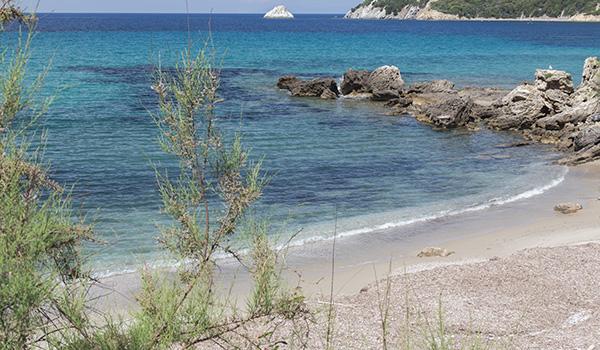 7 spiagge dell'isola d'Elba poco conosciute_spiaggia di Viticcio nel golfo dell'Enfola