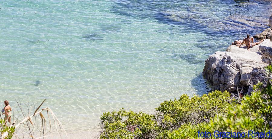 spiaggia Cavoli tra gli scogli