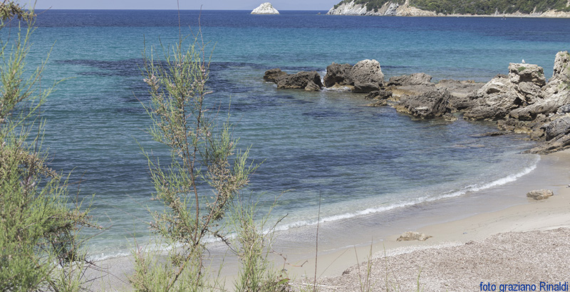 2. DA-INSERIRE-NEL-TESTO-800X410_Tante-Spiagge-pochi-Nomi_Viticcio15