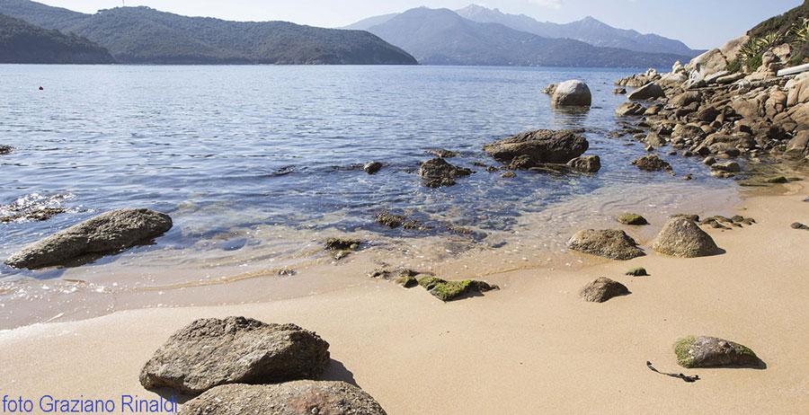 sabbia rosa della spiaggia di forno all'isola d'elba