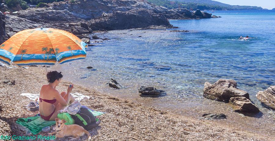 spiaggia felciaio capoliveri isola d'Elba donna con cane