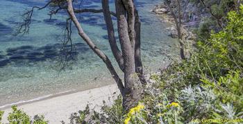 Porticciolo_Spiagge isola d'Elba_Rio Marina