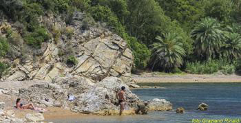 spiaggia Ottonella isola d'Elba