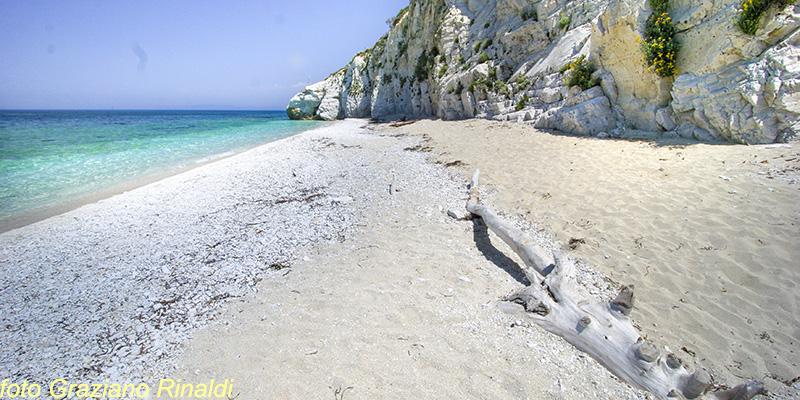 Le spiagge più belle dell'isola d'Elba_capo bianco