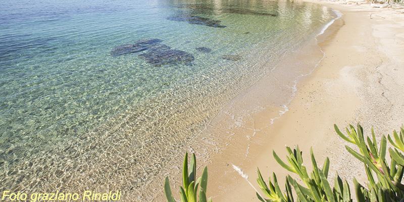 Le spiagge più belle dell'isola d'Elba_spiaggia del Forno nel golfo di Scaglieri