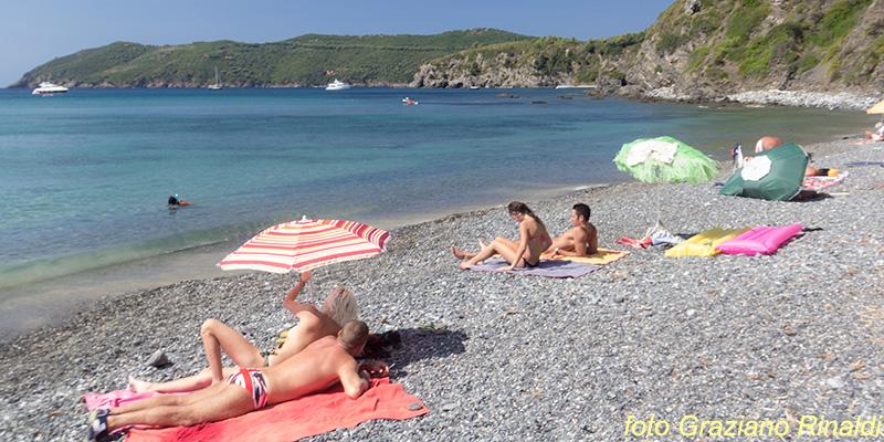 Le spiagge più belle dell'isola d'Elba_Norsi