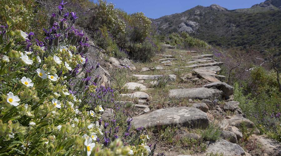 escursioni a chiessi valle gneccarina_
