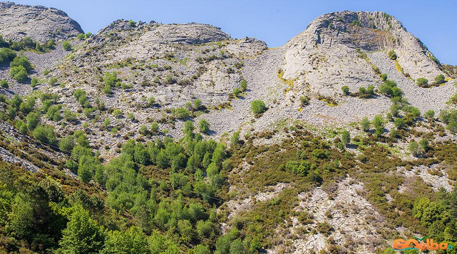 Isola_Elba_monte_Capanne_vegetazione_appenninica
