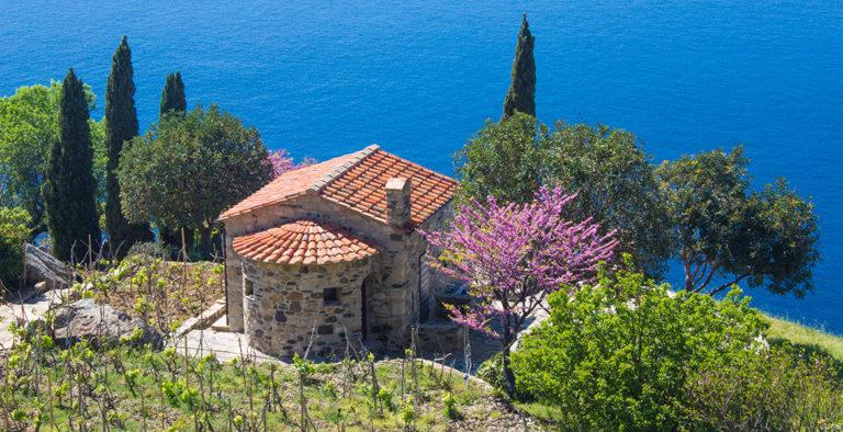 Foto: Vacanza da sogno all'isola d'Elba spendendo pochissimo