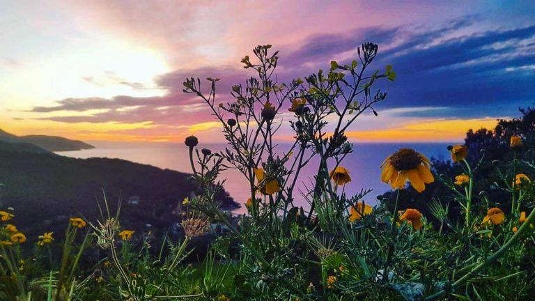 Foto: L'Elba e le sue leggende d'amore